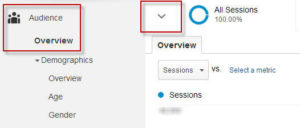 google-analytics-tips-custom-segment
