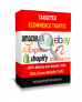 Targeted Ecommerce Traffic – StartUp Package